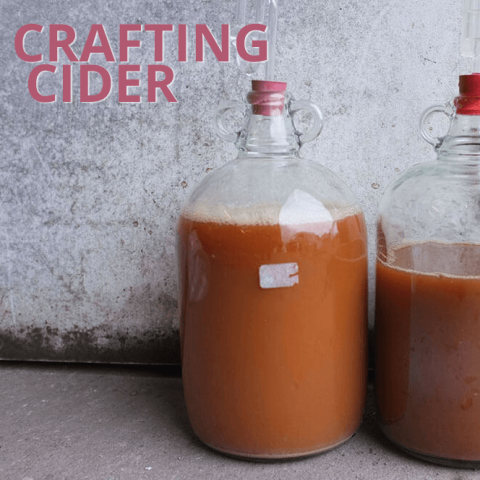 Crafting Cider with Antiform